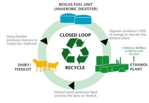 Biogas-fuel Canada anaerobic Digester