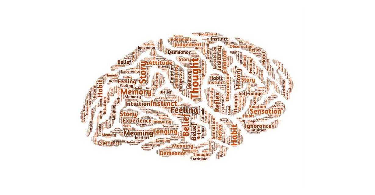 Settimana del Cervello 2019, domenica a Roseto si chiude il convegno di Psichiatria