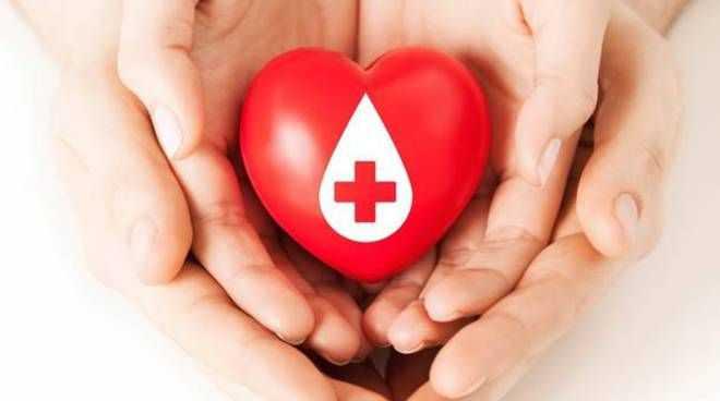 VIDEO | Donazioni sangue: in Abruzzo meno 5%, azione rilancio Regione