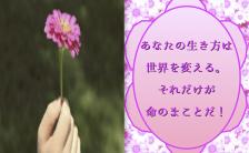 スピリチュアル宮崎よりの手紙―!PART.21 CALLING∞FLOWER(あなただけの直感を信じる)!その「好き」を咲かせよう