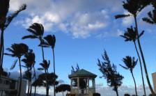 あなたの知らないハワイに出会う!<br>vol.8~言葉を変えれば世界が変わる