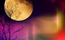 蒼月紫野の「新月のお願い事」vol.11<br>〜「2015/11/12 02:47 蠍座の新月」