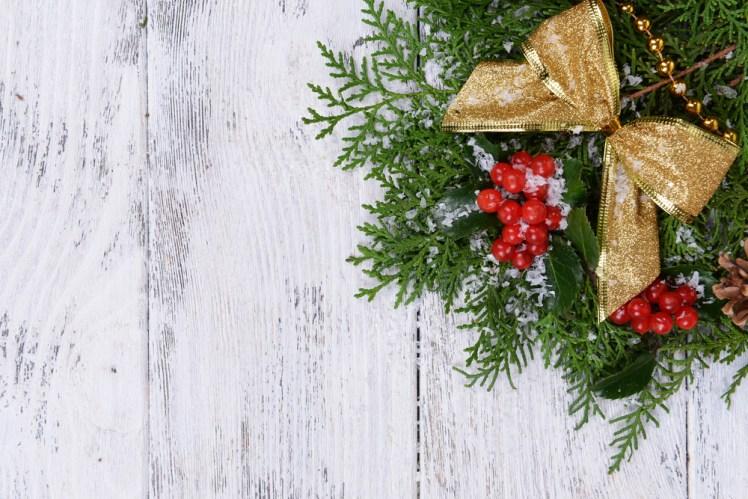 クリスマスに不思議な力を持ったヤドリギを飾りませんか?