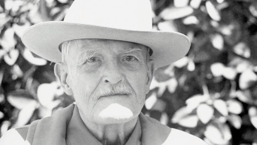 魔術師と呼ばれた催眠療法の天才 ミルトン・エリクソン