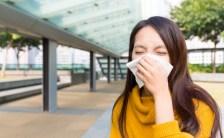 春はセージとエキナセアのハーブが頼りになる♡ <br>お部屋を浄化して、花粉症も鼻炎も目のかゆみも吹っ飛ばそう!