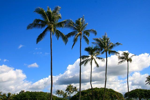 チャクラに対応するスピリチュアルなハワイの島々(前編)