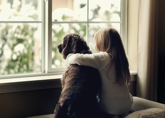 """シリウスB星の高次の意識体""""ポコプン""""からのメッセージPart.33 「犬は人間界と動物界の友情を築いています」"""