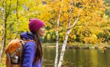 秋と言えば?【○○の秋】です! 波動を上げるチャンス到来! &女神からのメッセージ
