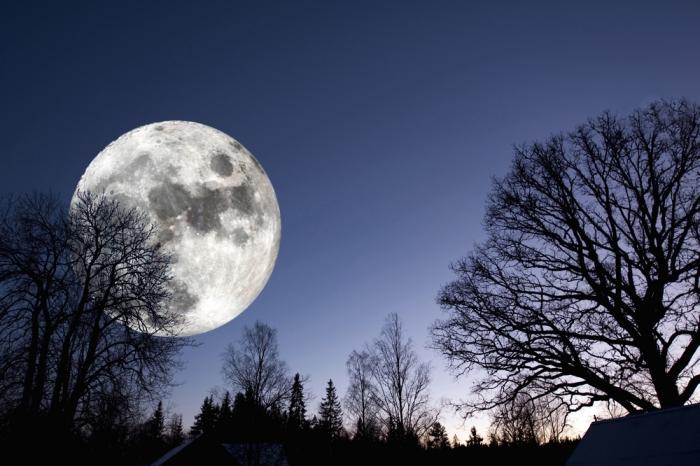 ☆68年ぶりに月が地球に最接近‼︎ ミラクルスーパームーンで願いを叶えるための4つの心得