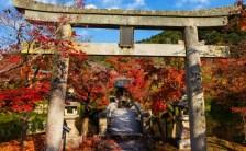 2016年12月12日 神社は世界へのギフト <br>ボルテックスであり神の口