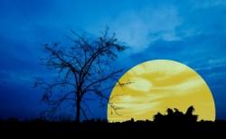<2017年1月12日20時34分はかに座の満月。今年最初の満月です>