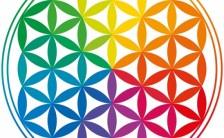神聖幾何学で活躍する様々な図形たち<br>〜シンプルな図形に宿る宇宙と自然の力