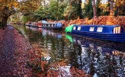 イギリスでナローボート暮らし。夫と運河で新婚生活Part.2