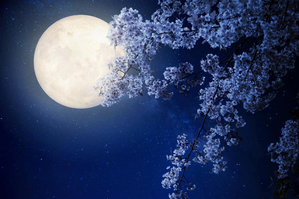 春の天秤座の満月~「月の女神」のパワーで女性らしさもアップ