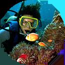 Discover scuba photo