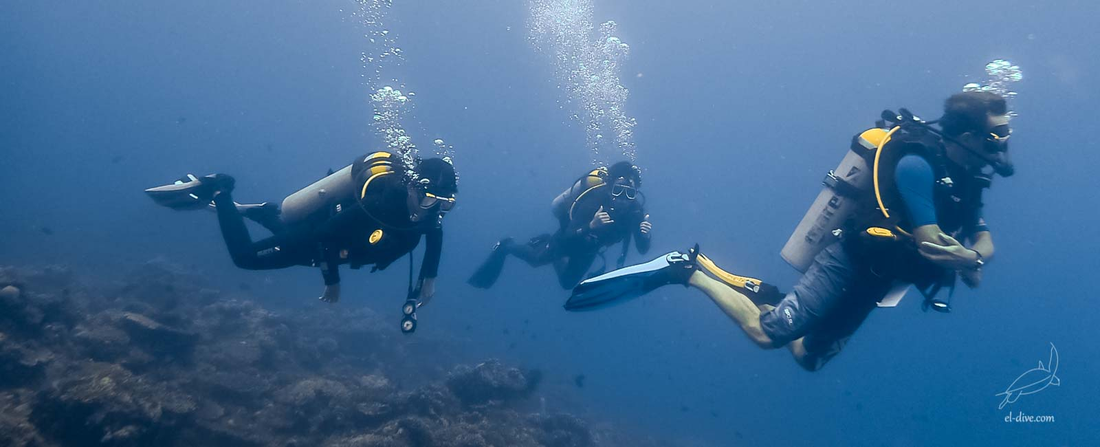 Get an incredible experience with the PADI Open Water courses
