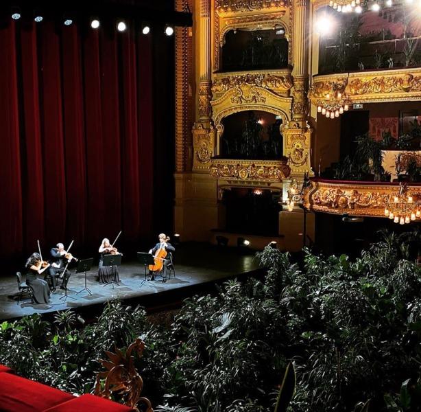 Un concierto para plantas en el Gran Teatre del Liceu de Barcelona