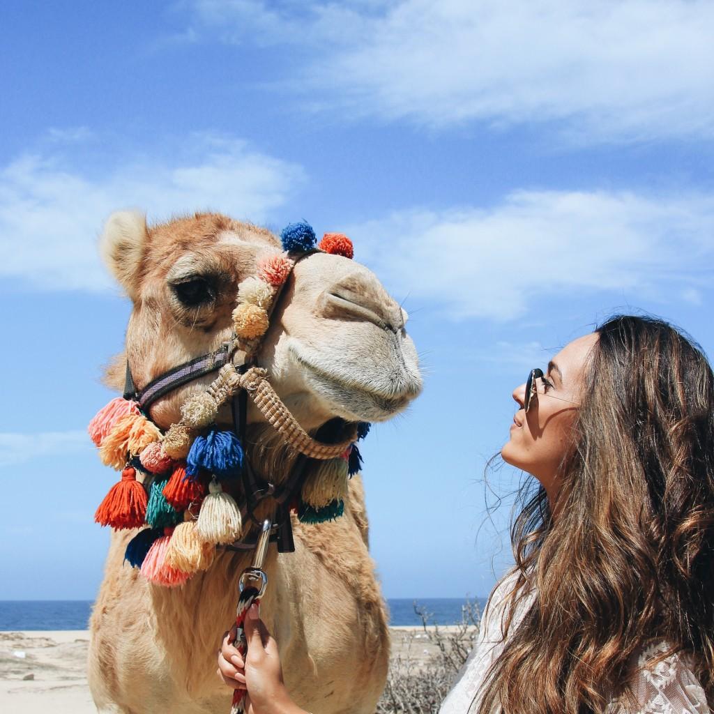 Camel Safari with Cabo Adventures in Cabo San Lucas, Mexico - elanaloo.com