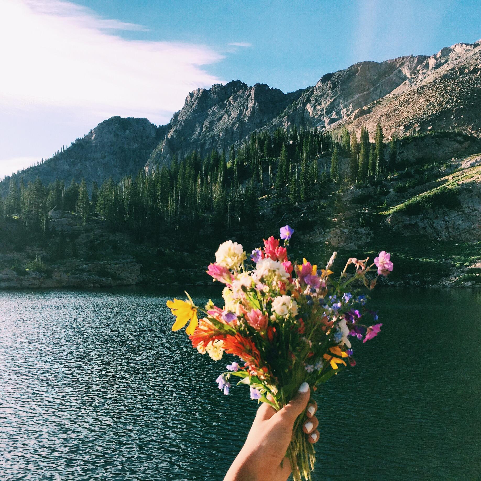 BEST HIKES IN UTAH - Cecret Lake & Albion Basin   elanaloo.com