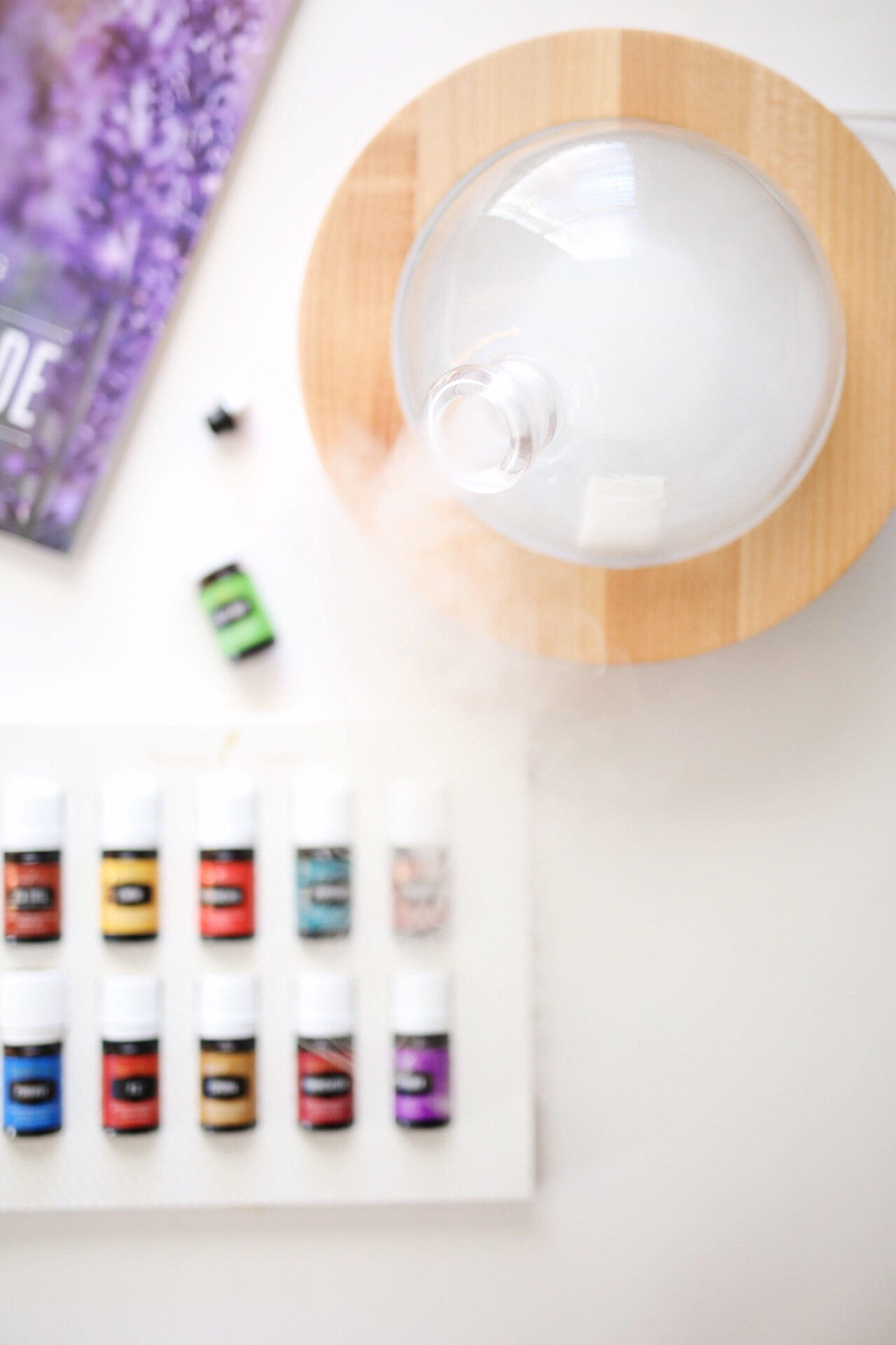 Young Living Starter Kit | elanaloo.com