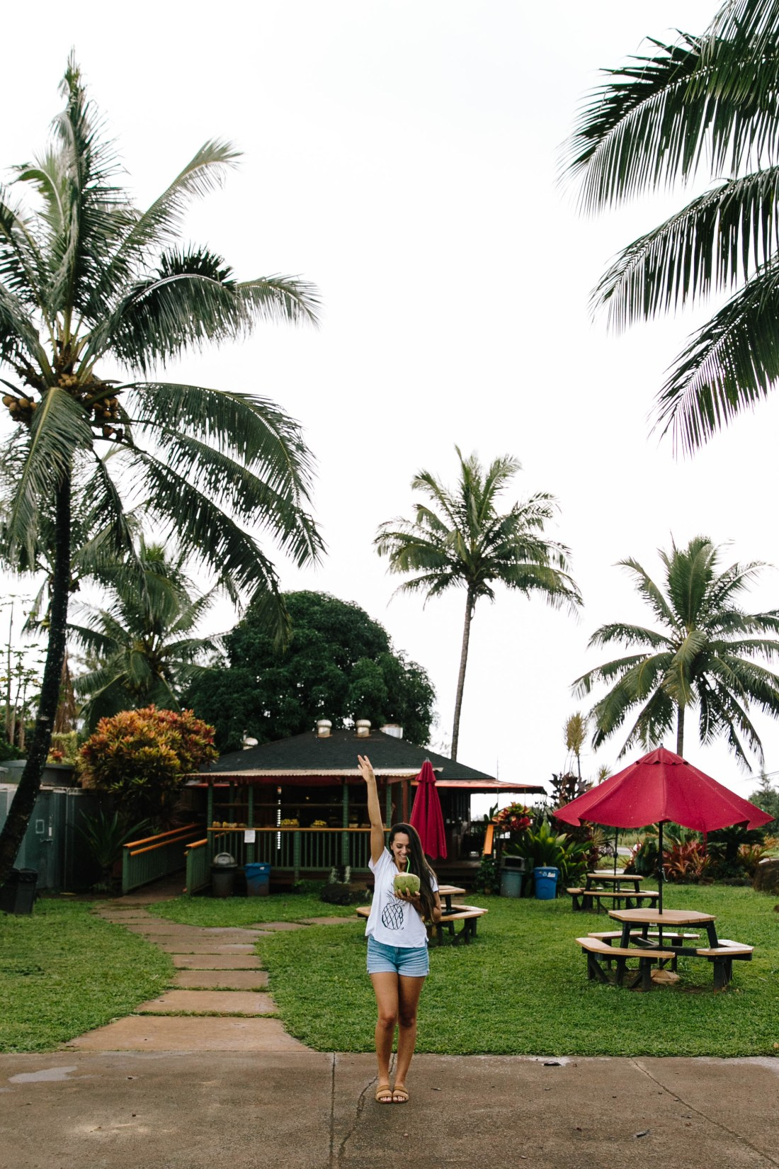 Travel Guide to Kauai, Hawaii   Travel Tips for Kauai   Packing List for Kauai   Helpful Tips for Traveling to Kauai   Kauai Travel Guide   Hawaii Travel Guide   Why You Should Visit Hawaii   Napali Coast Boat Excursion   Activities To Do in Kauai   Best Vacation Places in the World via @elanaloo + elanaloo.com