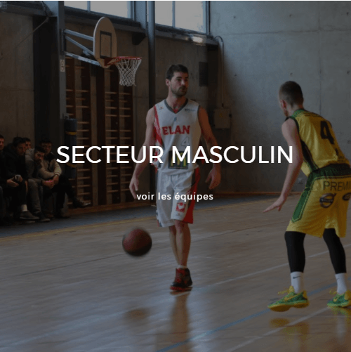 sectionmasculine