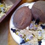 El coco, protagonista del mercadito de Ágora Mall