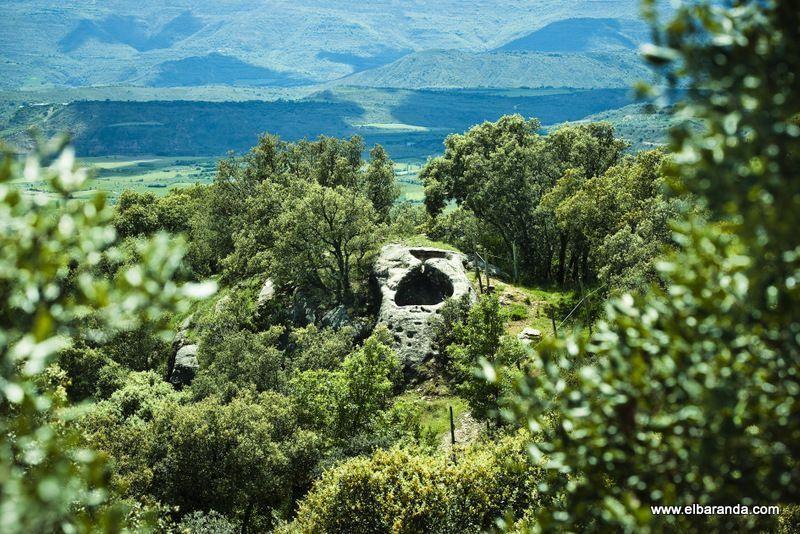 Cata de pequeños productores catalanes (II)
