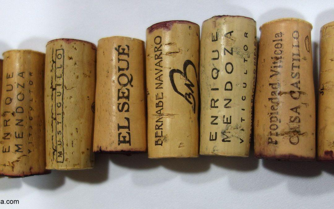 Cata de vinos de Levante – Sureste