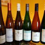 Cata de vinos trocken alemanes