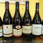 La vuelta al mundo con Pinot Noir