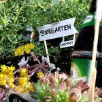 Ein Biergarten Im Fahrradkorb Das Vatertags Geschenk Mit Pfiff Elbemadchen