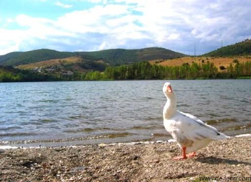 El lago Carucedo es una de las zonas de baño más conocidas