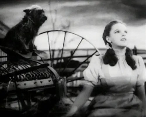 Judy Garland Over the Rainbow 21 - Judy_Garland_Over_the_Rainbow_2