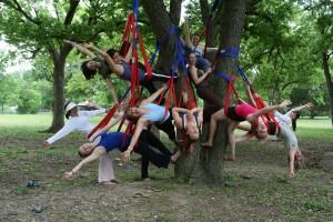 treeyoga3 - Tree Yoga
