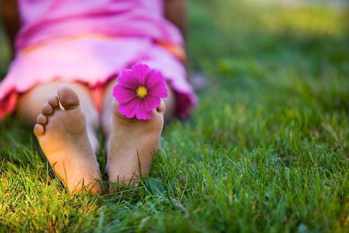 flor pies