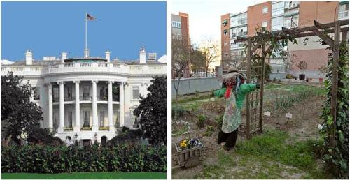 casa blancahuerta1 - huertas urbanas casa blanca