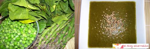 crema de verduras verde