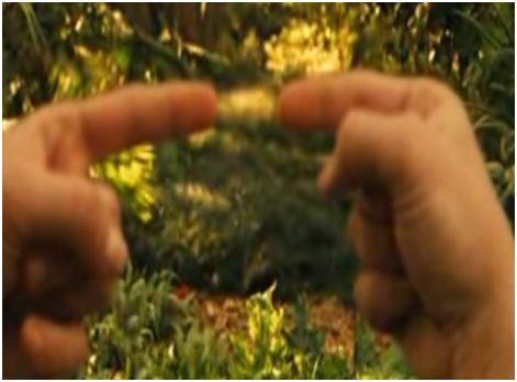 dedos - dedos