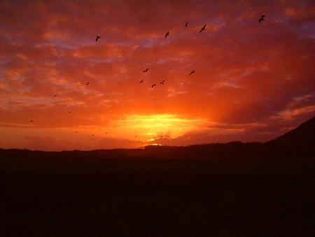 puesta de sol - puesta de sol