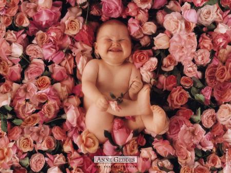 bebe-rosas