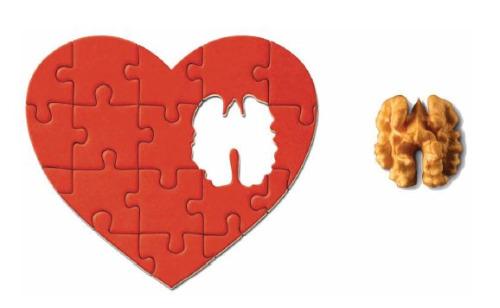 menus corazon - MENÚS CON CORAZÓN: recomendaciones y pdf con recetas