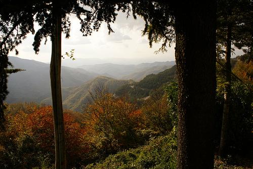 passo del muraglione italia - Ruta de otoño entre Toscana y Romaña: arte, paisaje y gastronomía
