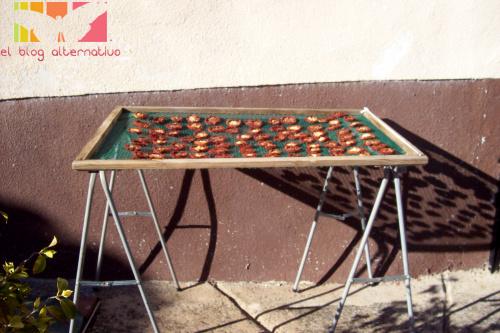 tomates secos1 - Cómo hacer tomates secos