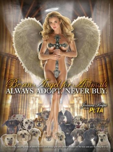 600joannakrupaadult - Sé un angel: no compres, adopta un animal