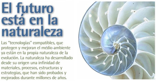 biomimesis - biomimesis