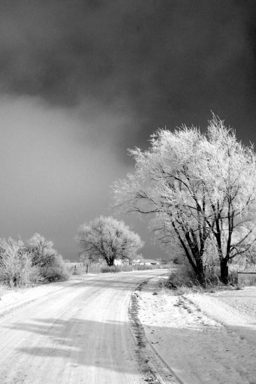 winterroad - invierno