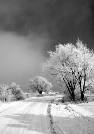 winterroad - EL INVIERNO: la estación olvidada