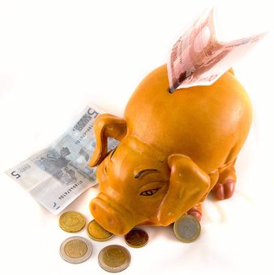 ahorrar - Año nuevo, ahorro nuevo. 10 ideas para el 2010