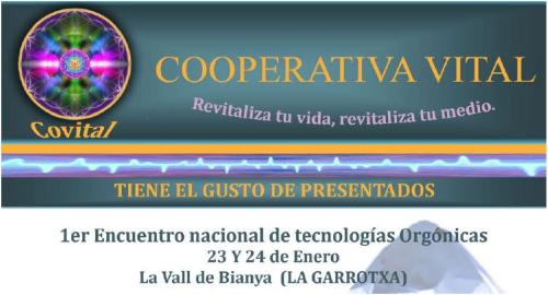 orgon2 - Primer Encuentro de Tecnologías Orgónicas en La Vall de Bianya (Gerona) los días 23 y 24 de Enero de 2010